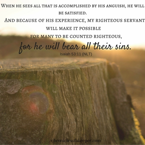 When he sees all that is accomplished by his anguish, he will be satisfied. And because of his experience, my righteous servant will make it possible for many to be counted righteous, for he will bear all their sins